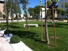giardino-althea.jpg