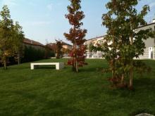 giardino-c-panchina.jpg