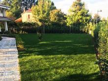 realizzazione-giardini-treviso-lv.jpg