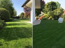 realizzazione-giardino-treviso-ab.jpg